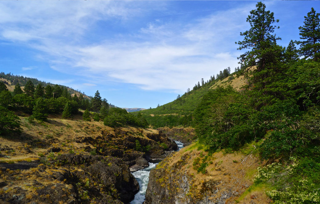 Cowlitz-River---Courtesy-of-Getty-Images